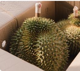 Retos en el uso de cajas para el Mercado Agrícola
